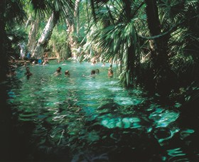 Mataranka Thermal Pool - Accommodation NT