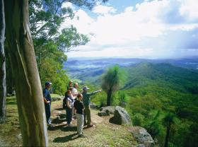Gold Coast Hinterland Great Walk - Accommodation NT