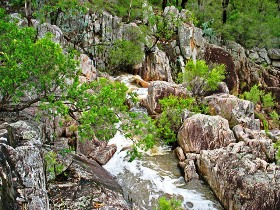 Crows Nest National Park - Accommodation NT