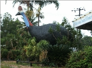The Big Cassowary - Accommodation NT