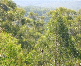 Bunyip State Park - Accommodation NT