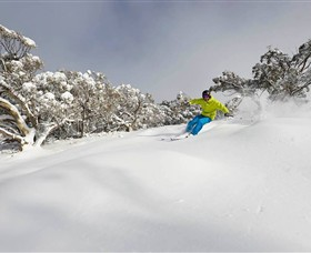 Mt Buller and Mt Stirling Alpine Resort - Accommodation NT