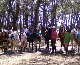 Bellarine Horse Riding Centre - Accommodation NT