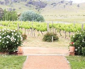 Brindabella Hills Winery - Accommodation NT