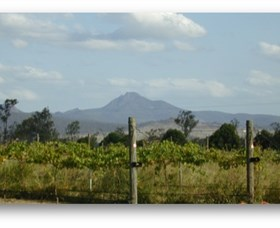 Ironbark Ridge Vineyard - Accommodation NT