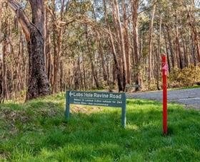 Lobs Hole Ravine 4WD Trail - Accommodation NT