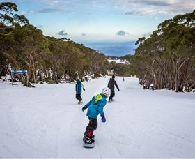 Mt Baw Baw Alpine Resort - Accommodation NT