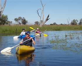 Marsh Meanders - Accommodation NT
