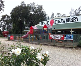The Big Strawberry - Accommodation NT