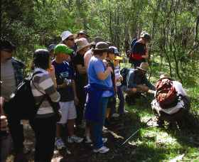 Warrumbungle National Park Discovery Program - Accommodation NT