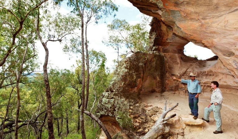 Pilliga National Park - Accommodation NT