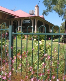 Dunedoo Local Museum