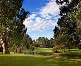 Commercial Golf Course - Accommodation NT