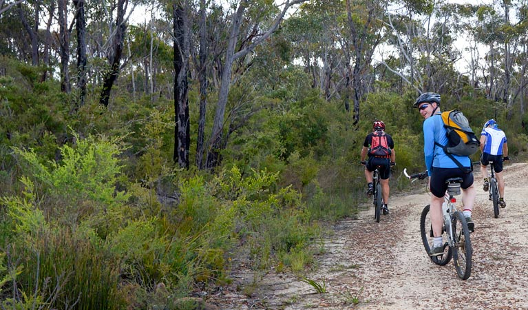 McMahon's Point ride - Wentworth Falls - Accommodation NT