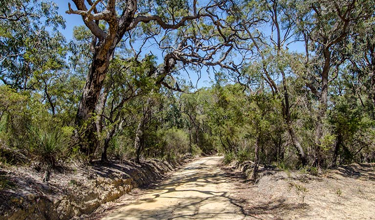 Howes trail - Accommodation NT