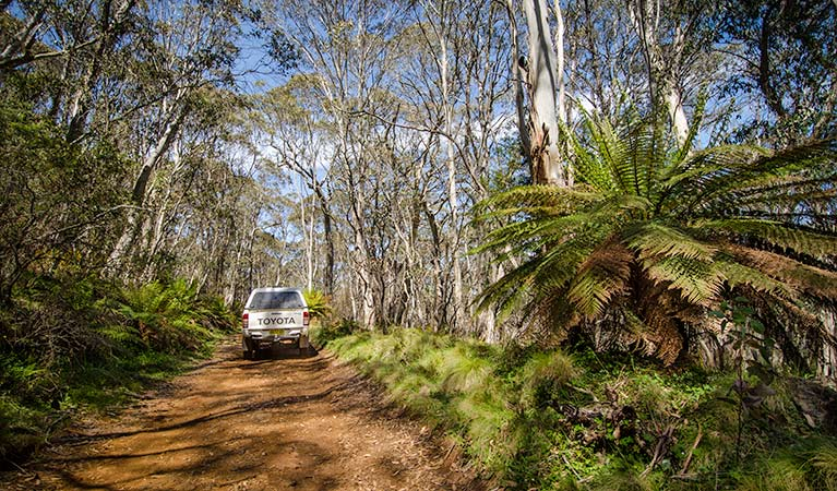 Barrington trail - Accommodation NT