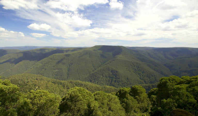 Barrington Tops National Park - Accommodation NT