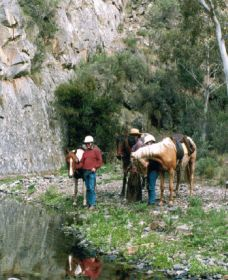 Yarramba Horse Riding - Accommodation NT