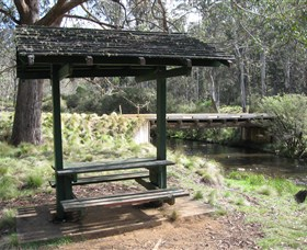 Barrington Tops State Forest - Accommodation NT