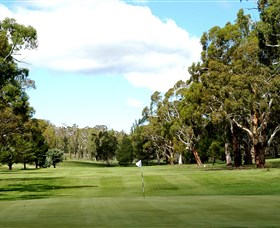 Cooma Golf Club - Accommodation NT
