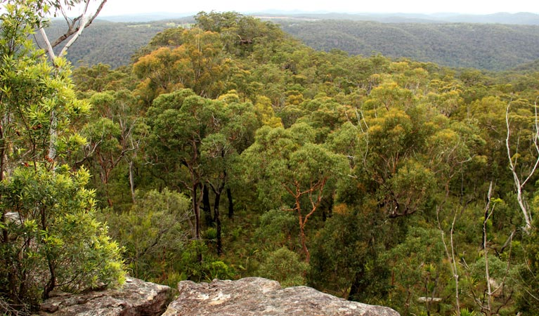 Mount Olive lookout - Accommodation NT