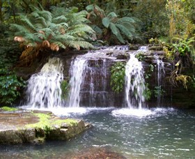 Barrington Tops National Park Walks - Accommodation NT