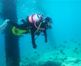 Shellharbour Scuba  Photography Centre - Accommodation NT