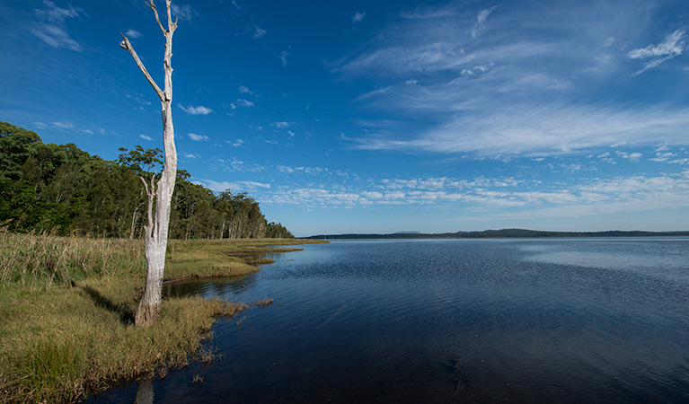 Lake Innes Nature Reserve - Accommodation NT