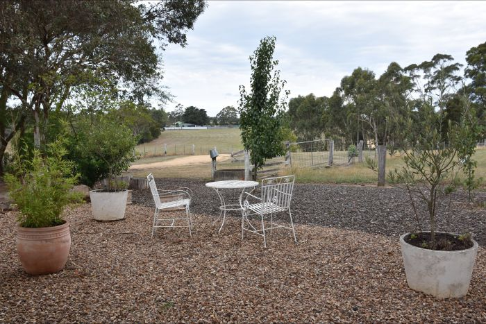 Cygnet Park Country Retreat - Accommodation NT