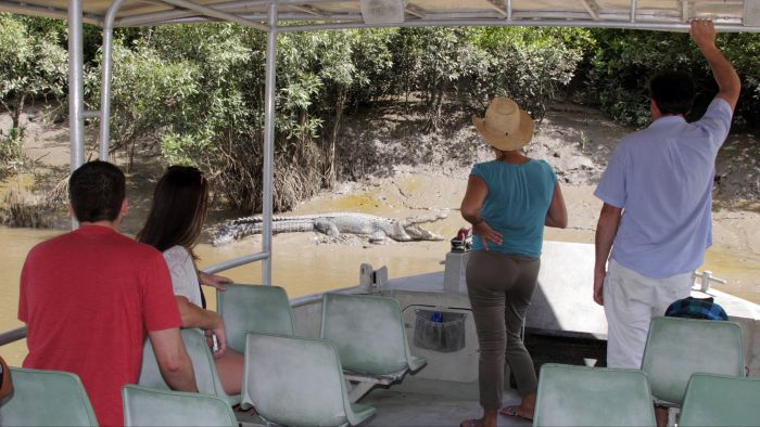 Whitsunday Crocodile Safari - Accommodation NT