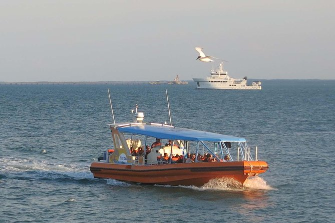 1-Hour Darwin Harbour Highlights Cruise - Accommodation NT