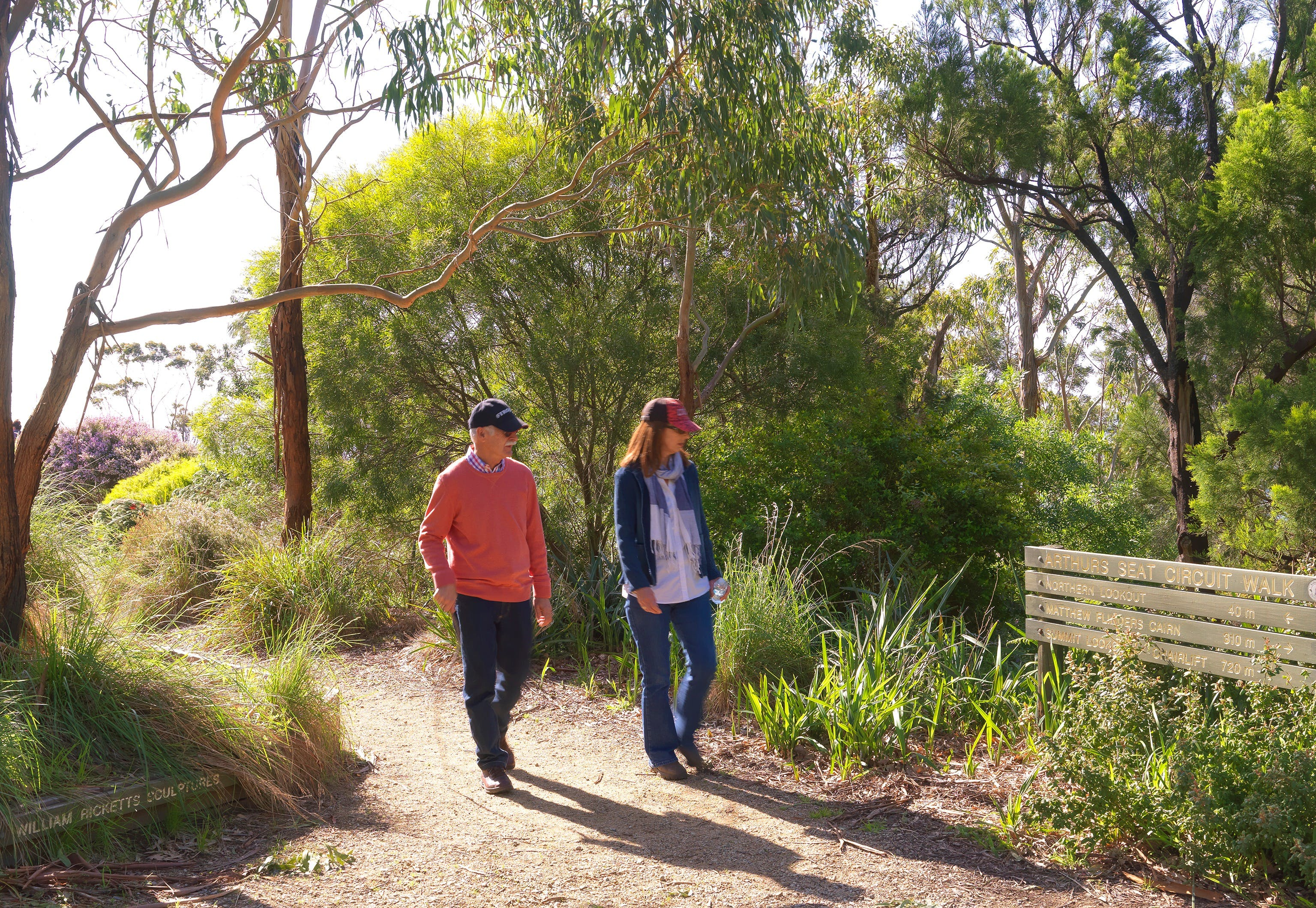 Arthurs Seat Circuit Walk - Accommodation NT