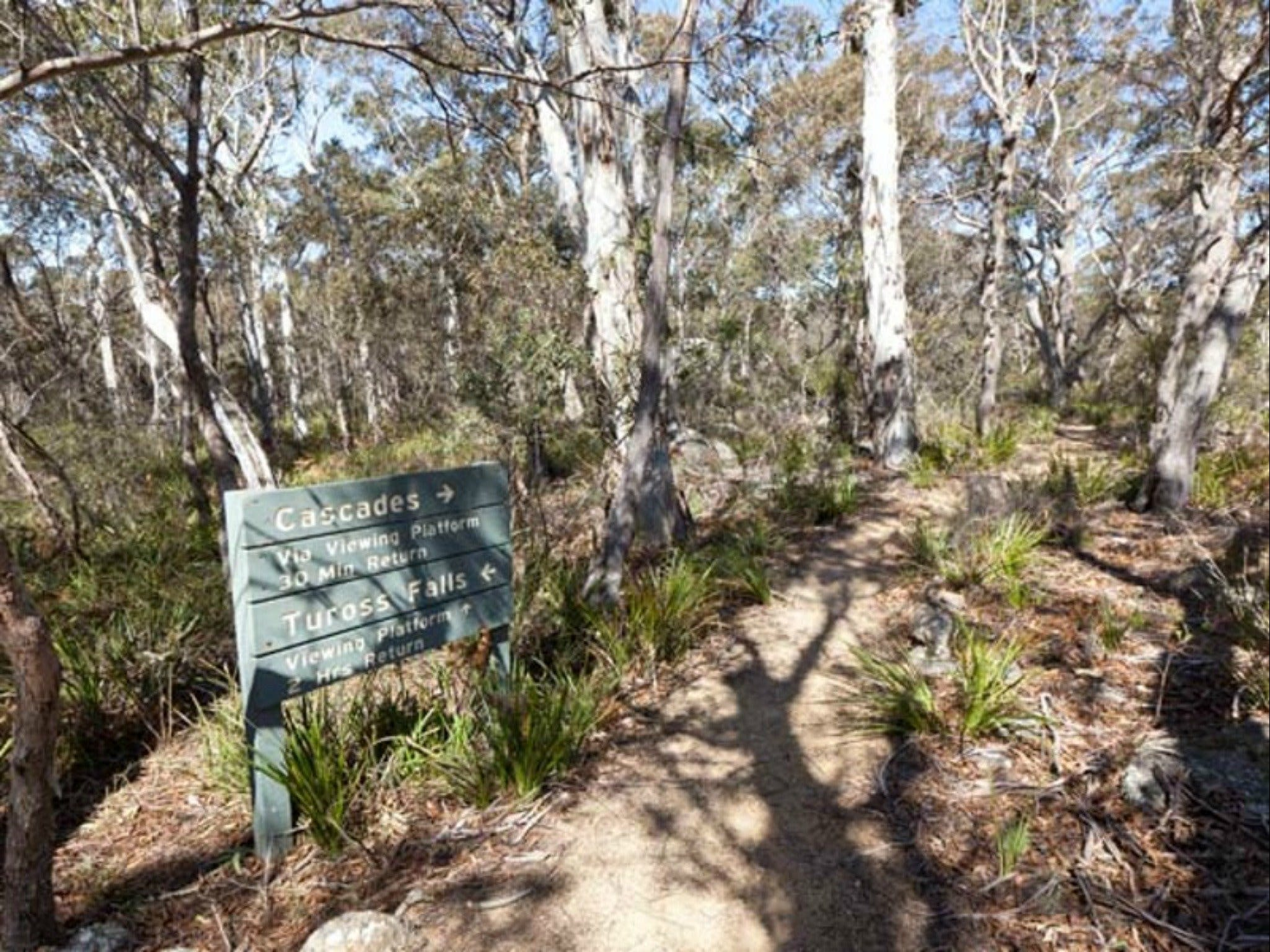 Cascades walking track and viewing platform - Accommodation NT