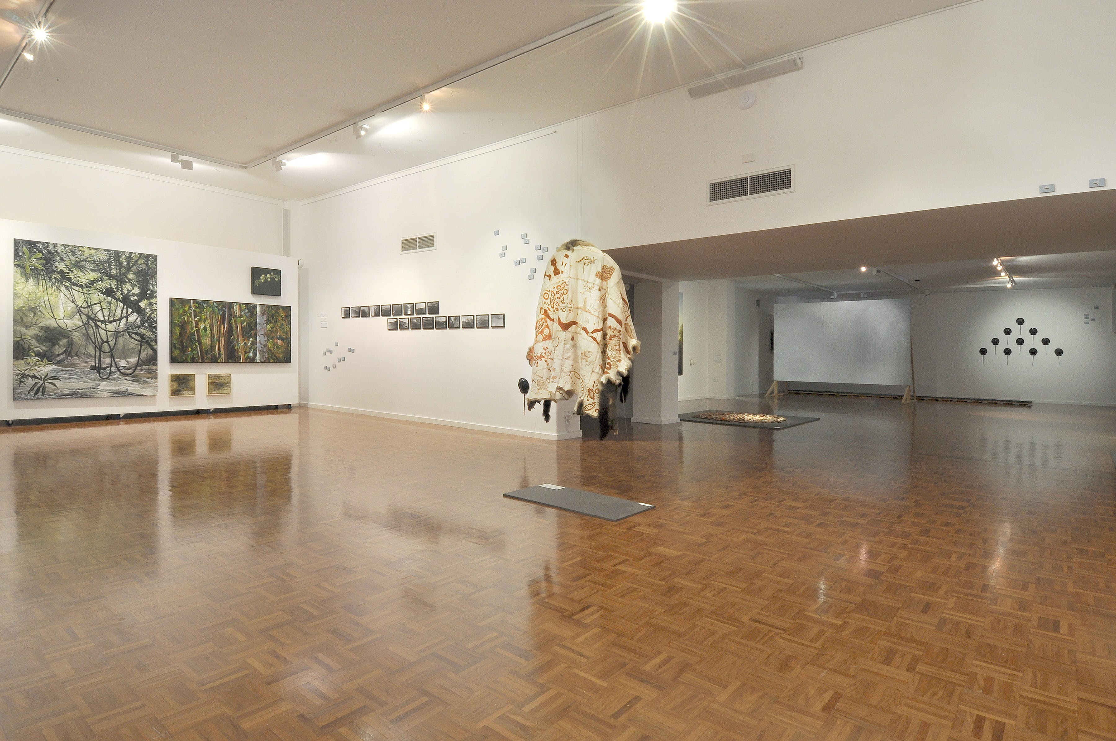 Noosa Regional Gallery - Accommodation NT