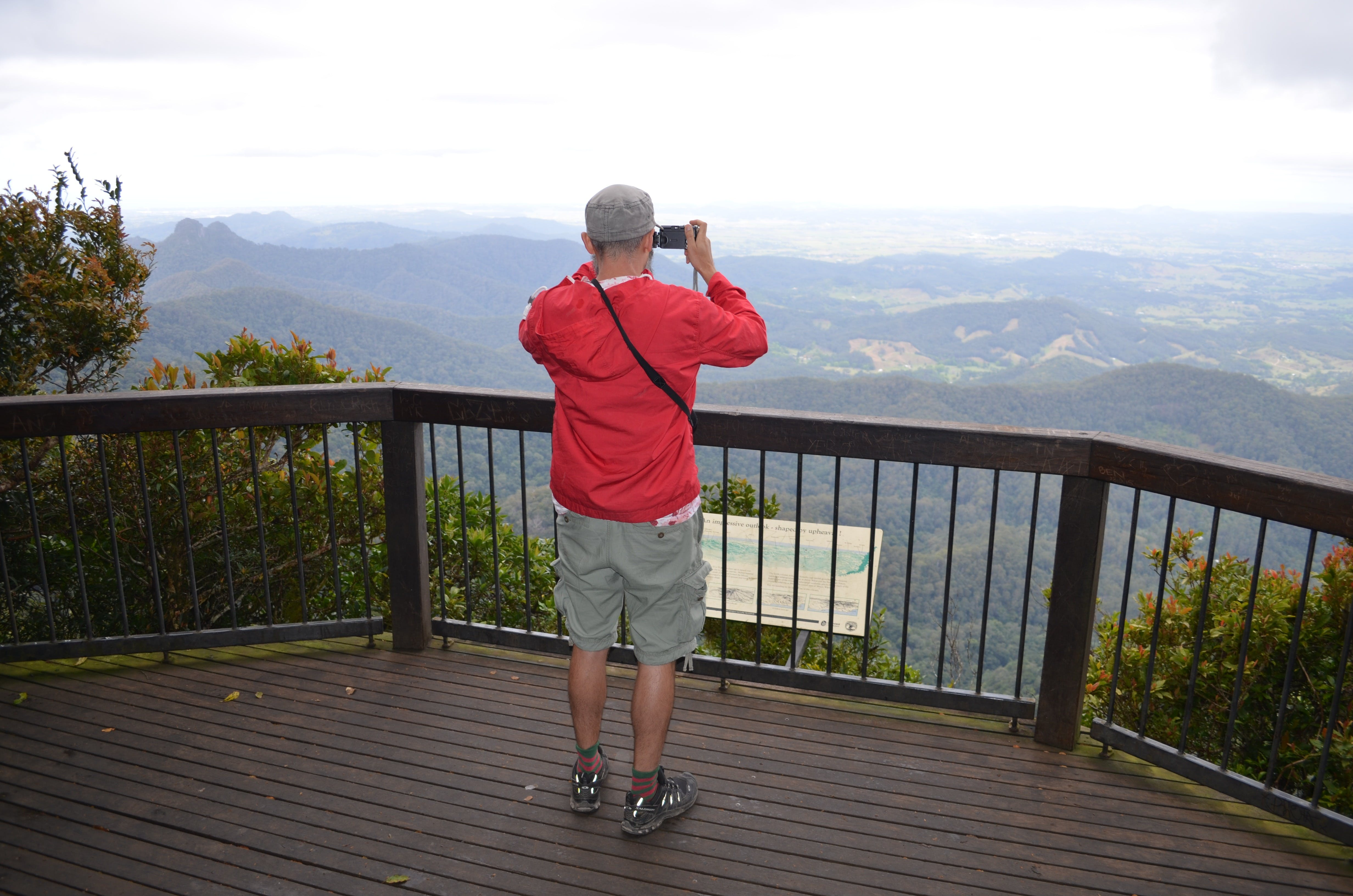 Best of All lookout track Springbrook National Park - Accommodation NT
