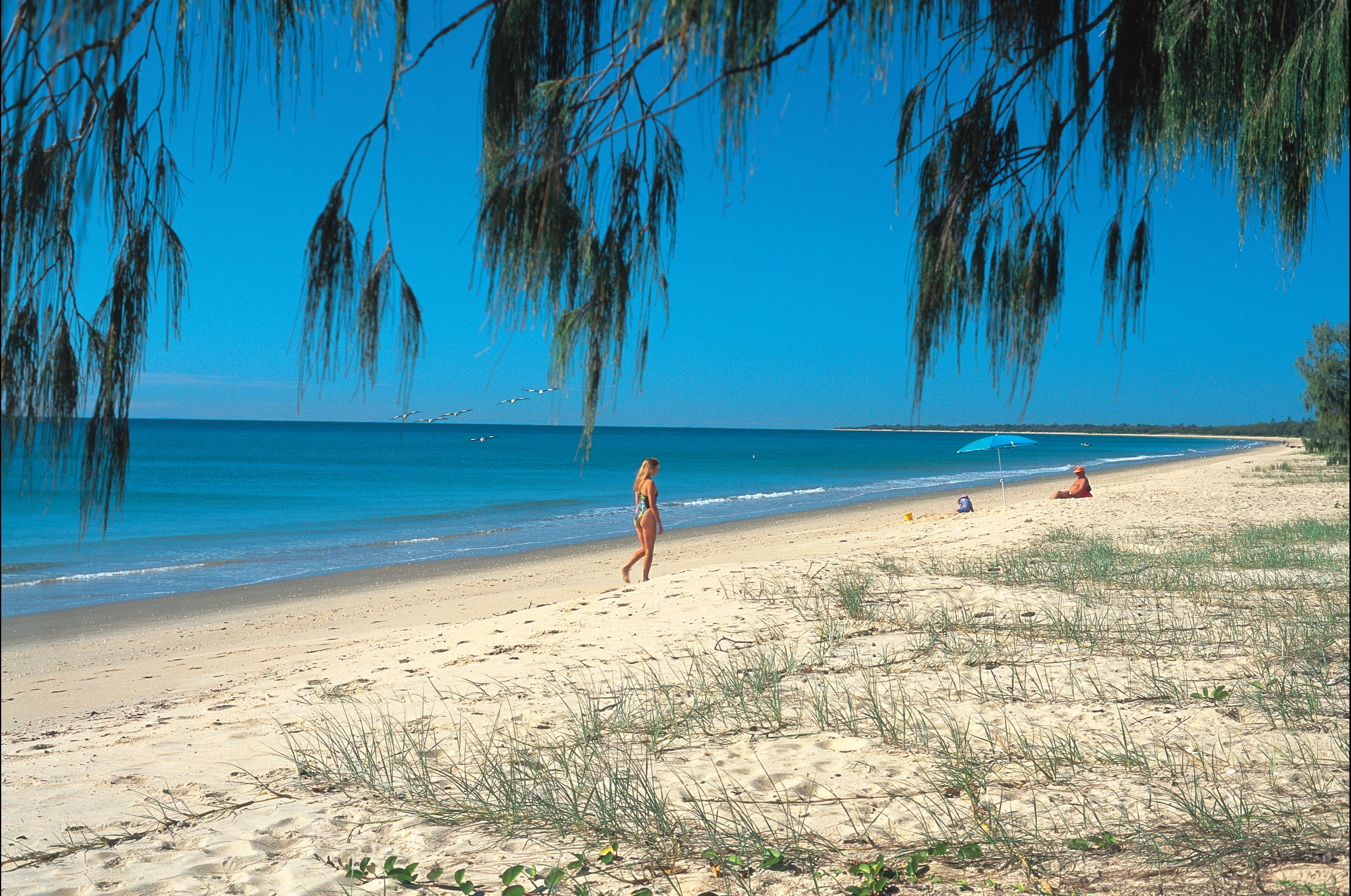 Woodgate Beach Park and Playground - Accommodation NT