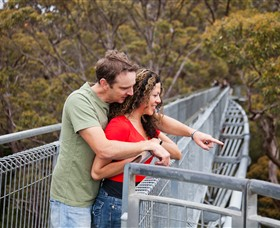 Valley of the Giants Tree Top Walk - Accommodation NT