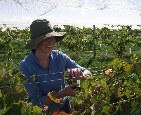 Kingsdale Wines - Accommodation NT