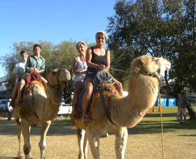 Calamunnda Camel Farm - Accommodation NT