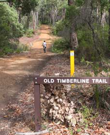 Old Timberline and Sidings Rail Trails - Accommodation NT
