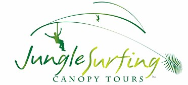 Jungle Surfing Canopy Tours and Jungle Adventures Nightwalks - Accommodation NT