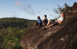Cooktown Aboriginal Art Tours - Accommodation NT