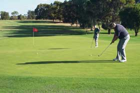 Waikerie Golf Club - Accommodation NT