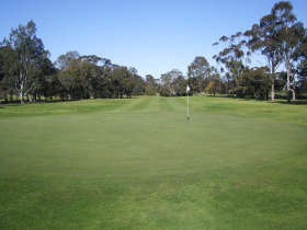 Maffra Golf Club - Accommodation NT