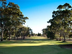Loxton Golf Club - Accommodation NT