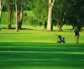 Foster Golf Club - Accommodation NT