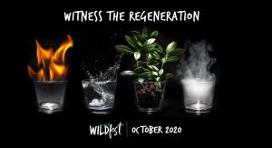 Wildfest - Annual Festival - Accommodation NT