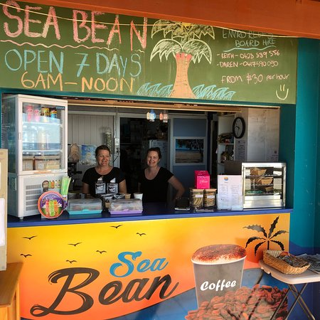 Sea Bean - Accommodation NT