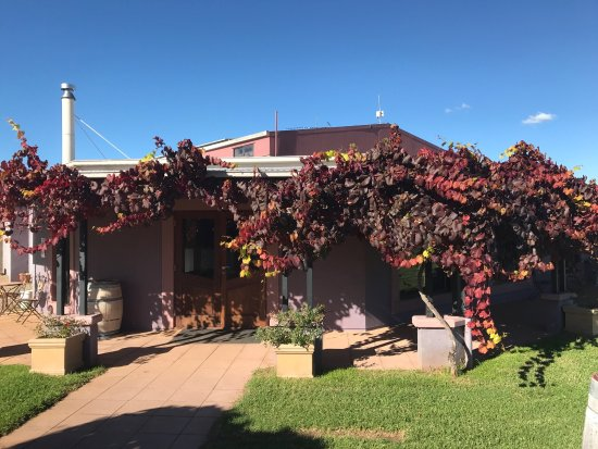 Jester Hill Wines - Accommodation NT